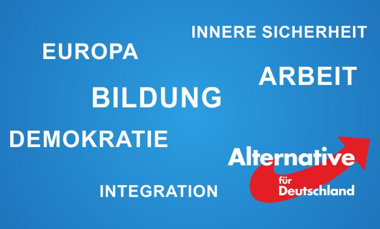 AfD Programmvideo zur Bundestagswahl