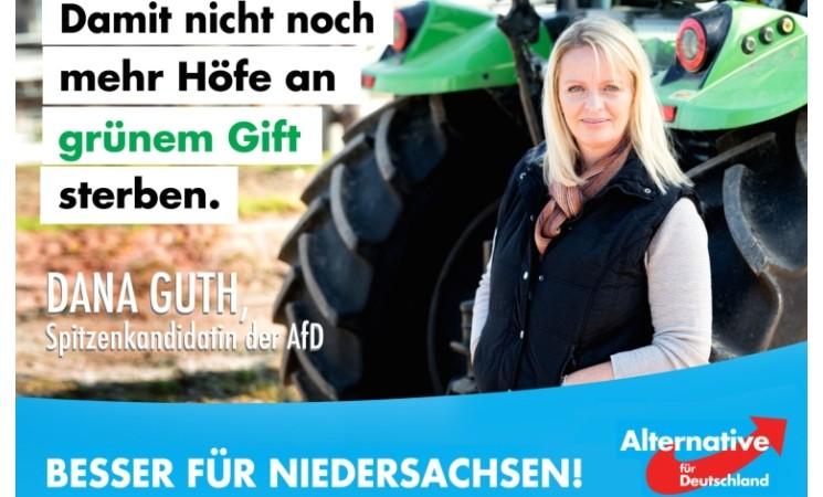 Guth für Niedersachsen ist sehr gut!